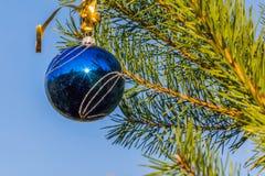 在圣诞树蓝天背景的蓝色装饰球 免版税库存图片