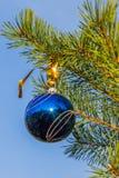 在圣诞树蓝天背景的蓝色装饰球 库存图片