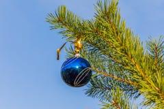 在圣诞树蓝天背景的蓝色装饰球 免版税库存照片
