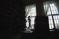 在圣诞树附近的怀孕的母亲 库存照片