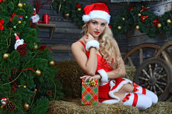在圣诞树附近的秀丽微笑的圣诞老人妇女 图库摄影