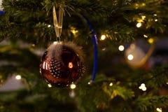 在圣诞树,圣诞节背景的圣诞节装饰 免版税图库摄影