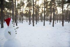 在圣诞老人一个红色盖帽的雪人在杉木森林里 库存照片