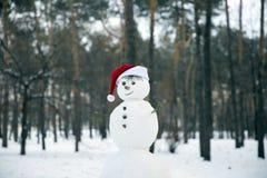 在圣诞老人一个红色盖帽的滑稽的雪人一被弄脏的backgroun的 免版税库存照片