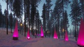 在圣诞老人公园附近的森林:与手电的冬天场面,定期流逝 股票录像