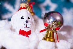在圣诞老人帽子和圣诞节礼物的一个玩具狗在具球果分支背景  库存图片