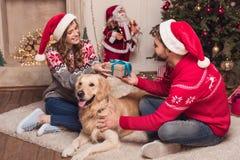 在圣诞老人帽子的夫妇有狗的 库存图片