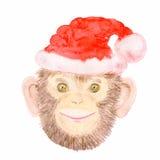 在圣诞老人帽子的微笑的黑猩猩猴子 免版税库存图片