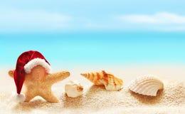 在圣诞老人帽子的海星在夏天海滩 免版税库存照片