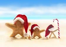 在圣诞老人帽子的海星在沙滩 图库摄影