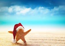 在圣诞老人帽子的海星在海边 库存照片