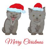 在圣诞老人帽子的逗人喜爱的小的小猫导航平的例证 库存例证
