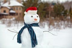 在圣诞老人帽子的雪人 库存照片