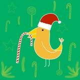 在圣诞老人的帽子的鸟用糖果 皇族释放例证