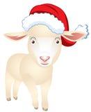 在圣诞老人盖帽的绵羊  免版税图库摄影