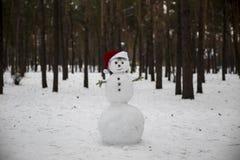 在圣诞老人红色帽子的快乐的雪人在迷离的公园 库存照片