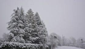 在圣诞节假日期间,雪魔术  图库摄影