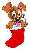 在圣诞节储存的小狗 免版税库存照片