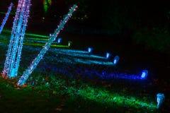 在圣诞节在皇家Kew庭院里,伦敦的夜装饰 免版税库存照片
