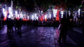 在圣诞节季节期间的光展示 免版税库存图片