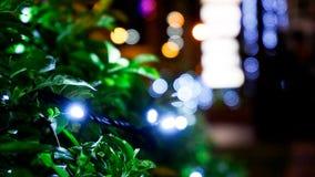 在圣诞节季节期间的圣诞灯Bokeh 免版税库存照片