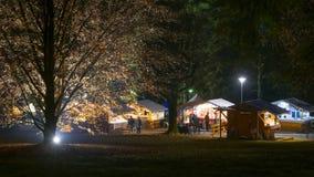 在圣诞节市场上的有启发性树 免版税库存图片
