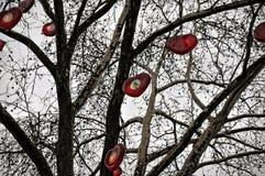 在圣诞节市场上的装饰的和有启发性树在科隆 免版税库存照片