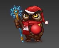 在圣诞节帽子和雪花职员的猫头鹰 免版税库存图片