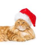 在圣诞节帽子的大姜猫 免版税图库摄影