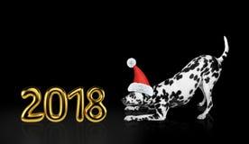 在圣诞节帽子的逗人喜爱的达尔马希亚狗在2018年附近 查出在黑色 免版税库存图片