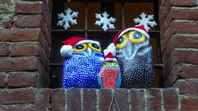 在圣诞节时间的石头用手绘的猫头鹰 免版税库存照片