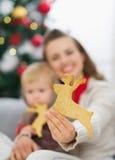 在圣诞节曲奇饼的特写镜头在母亲现有量 图库摄影