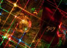 在圣诞节的喜悦 免版税库存图片