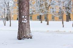 在圣诞节的微笑的树 库存照片