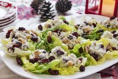在圣诞节节日晚会的低贱莴苣小船开胃菜 免版税库存照片
