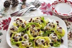 在圣诞节节日晚会的低贱莴苣小船开胃菜 免版税图库摄影