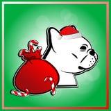 在圣诞节节日的逗人喜爱的法国牛头犬 库存例证