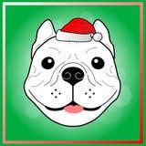 在圣诞节节日的逗人喜爱的法国牛头犬 向量例证