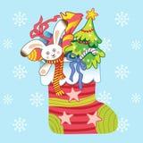 在圣诞节袜子的白色兔宝宝 图库摄影