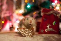 在圣诞节装饰背景的装饰鼠  免版税库存图片