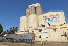 在圣阿诺的Ridley AgriProduct (以前Barastoc)从老面粉加工厂经营(1877) Ridley生产宠物和股票饲料 免版税库存图片