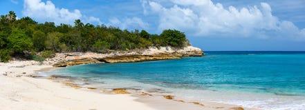 在圣马丁加勒比的美丽的海滩 库存图片