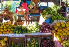 在圣马丁的水果摊 库存照片