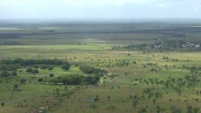 在圭亚那附近的巴西边界第2部分的大草原 影视素材