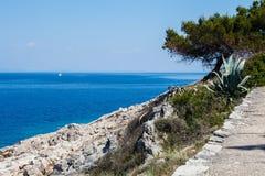 在地中海乘快艇和在岩石的树在海岛上 免版税库存照片