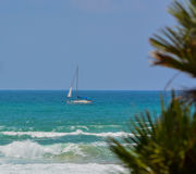 在地中海的一条风船在亚实基伦,以色列 库存图片