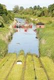 在地产的游泳 免版税库存图片