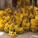 在地方市场上的香蕉在斯里兰卡 库存照片