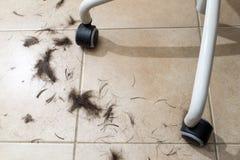 在地板上的修剪头发在扶手椅子下的一个发廊 库存图片