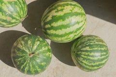 在地板上的四个西瓜在太阳光 免版税图库摄影